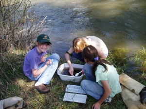 Students in the Swan Valley take water samples for a Montana Watercourse project (photo courtesy of Diann Ericson.